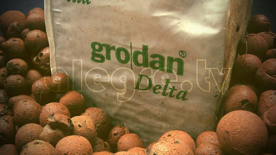 Grodan και Υδροπονία