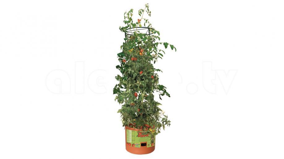 Αυτόματο πότισμα με Tomato Barrel